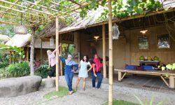 Relaxing lunch at Bebek Tepi Sawah Ubud, Bali